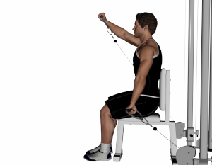 Cable-Seated-Alternating-Front-Raise-622x485