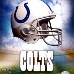 Indi Colts 2010 super bowl champs?